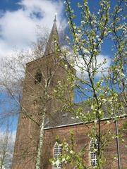 Kerk vanuit achtertuin